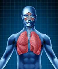 Allergy Asthma Arthritis & Lung Center