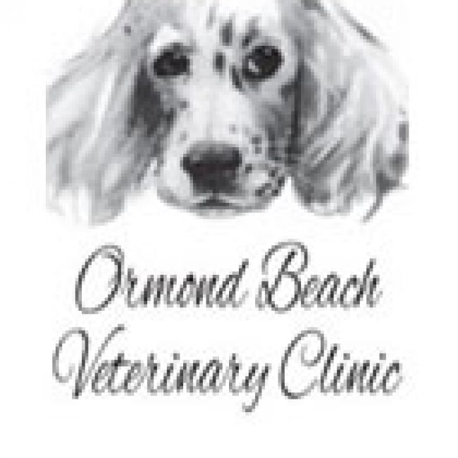 Ormond Beach Veterinary Clinic